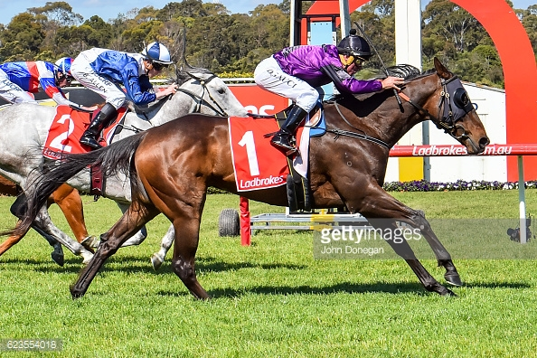 Kalashani Lad ridden by Darren Gauci wins the Ladbrokes Up For The Challenge Handicap at Ladbrokes Park Hillside Racecourse on November 16, 2016 in Springvale, Australia. (John Donegan/Racing Photos)